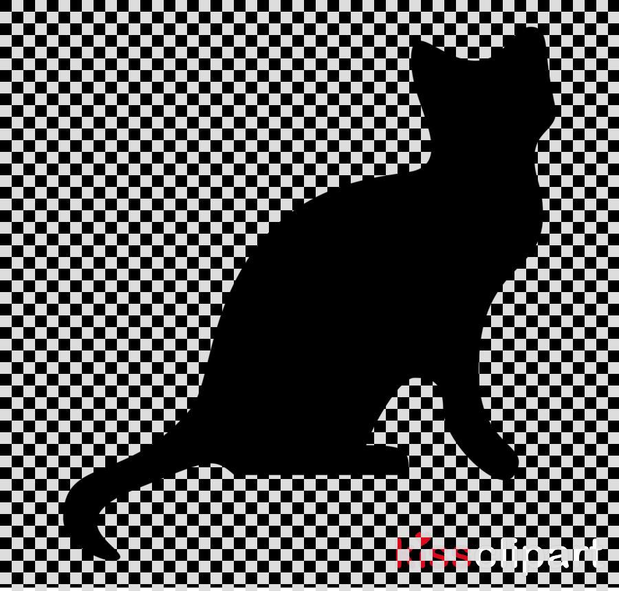 cat black white small to medium.