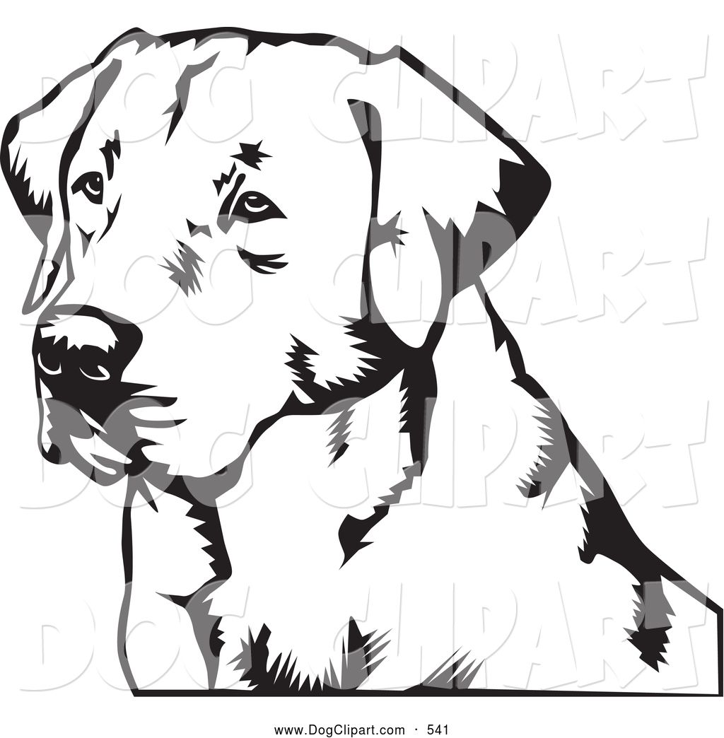 Image result for golden retriever stencil.