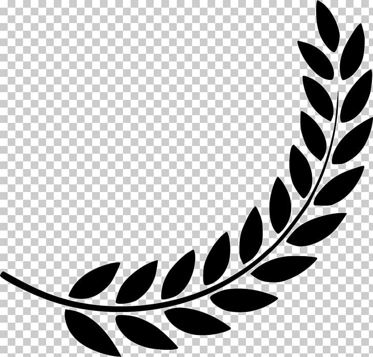 Laurel wreath Computer Icons Symbol, olive wreath, white.