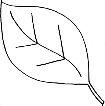 Leaves Clipart Black And White & Leaves Black And White Clip Art.