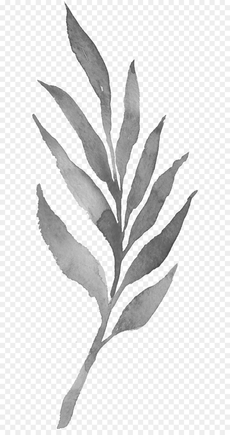 Leaf Black And White Png & Free Leaf Black And White.png Transparent.
