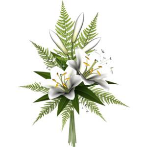 White lilies clipart.