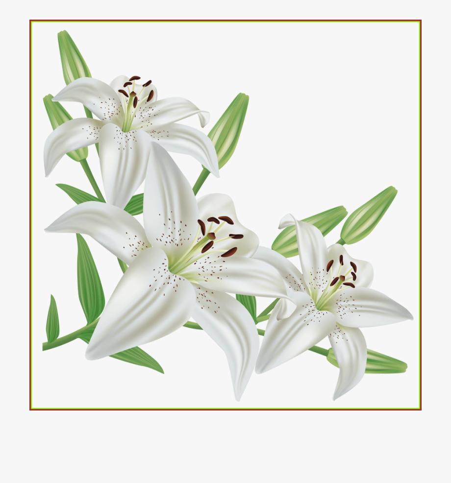 Lily Clipart Flower Bouquet.