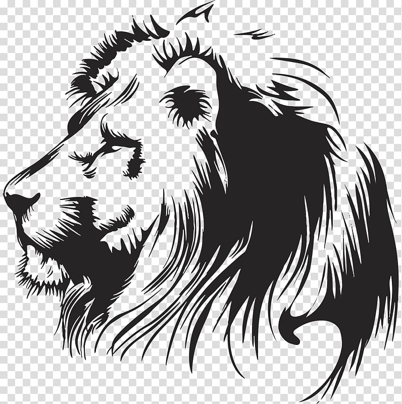 Lion graphics Drawing Illustration, lion transparent.