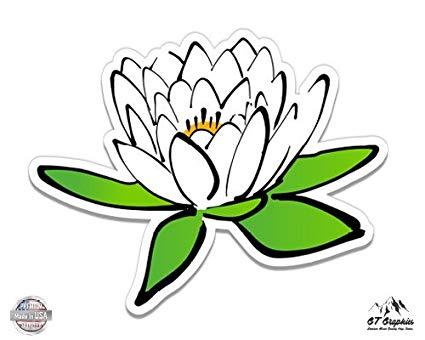 Amazon.com: White Lotus Flower.