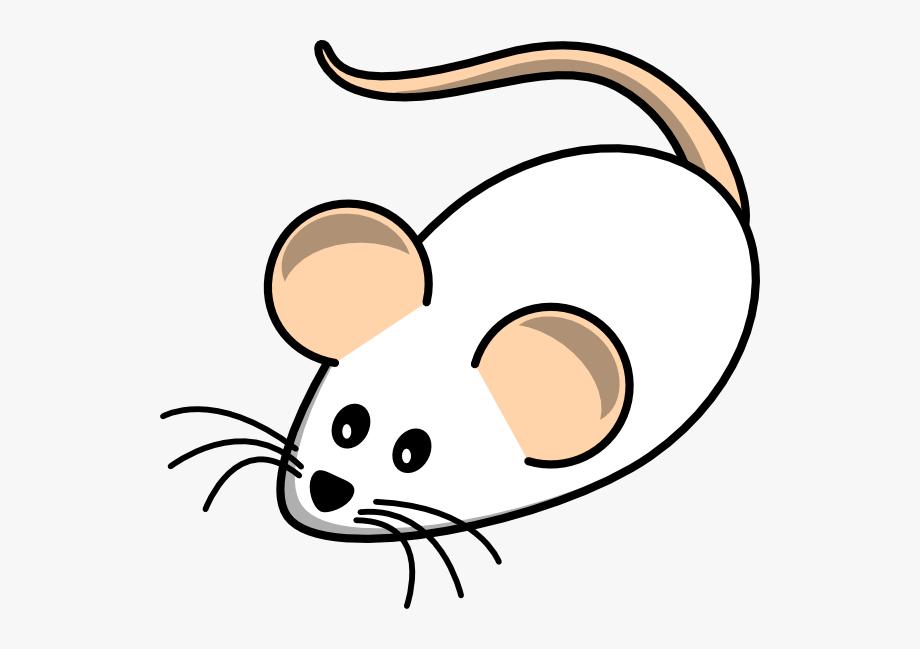 Field Mouse White Clip Art.