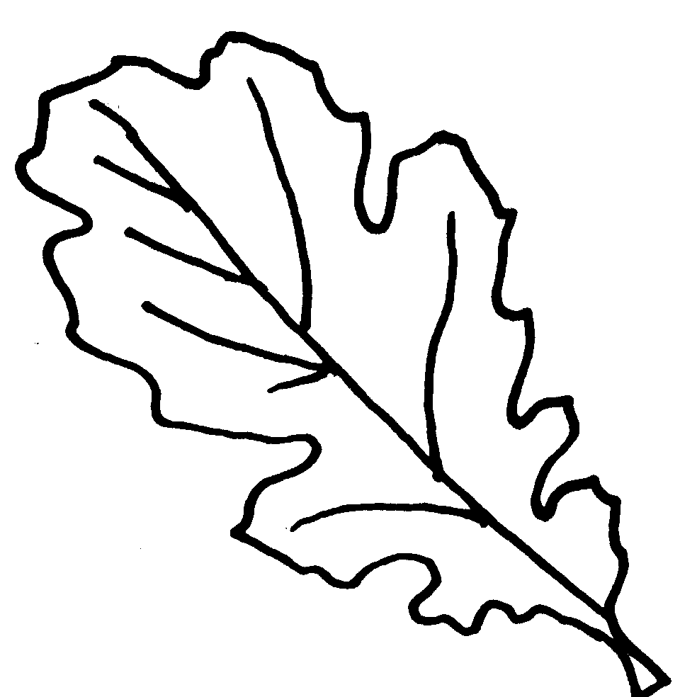 Free Picture Of Oak Leaves, Download Free Clip Art, Free Clip Art on.
