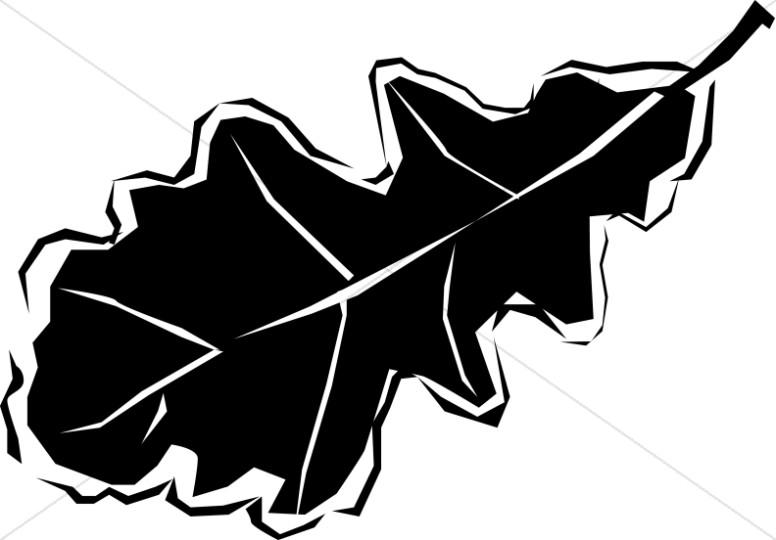 Black and White Oak Leaf.