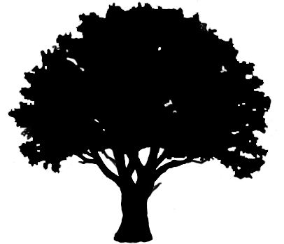 Free download Oak Tree Outline Clipart for your creation..