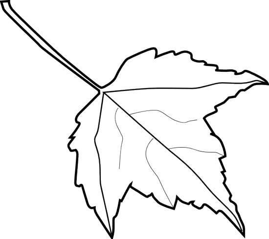 Free Leaf Images Black And White, Download Free Clip Art, Free Clip.