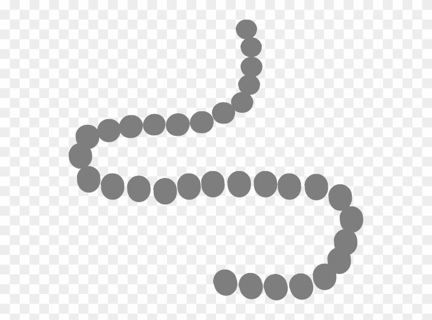 Pearls Clip Art At Clker Com Vector Clip Art Online.