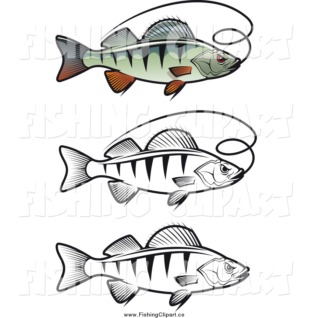 Clip Art of Colored and Black and White Perch Fish and Fishing.