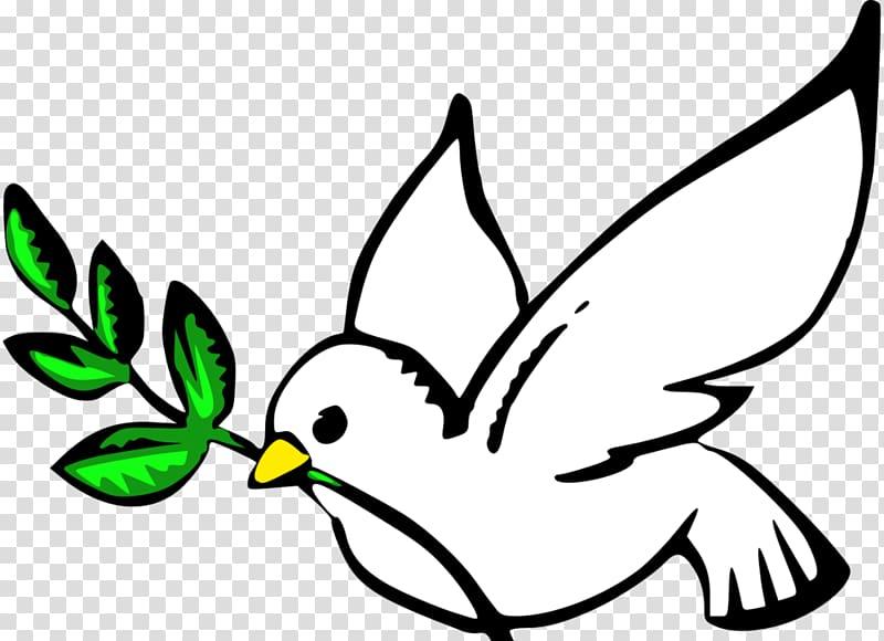 Columbidae Doves as symbols Peace symbols , white pigeon.