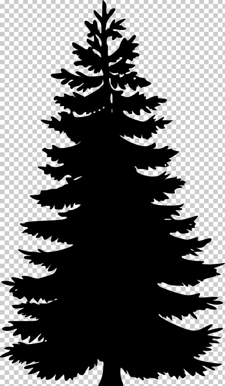 Eastern White Pine Tree PNG, Clipart, Art, Black And White, Black.