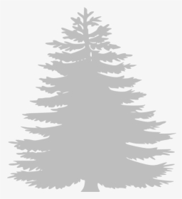 Pine Tree Clip Art , Png Download.