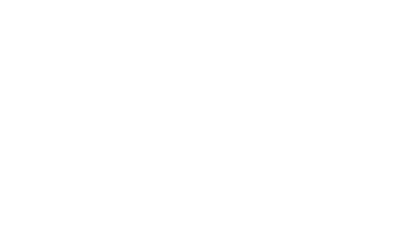 Plane Clipart White.