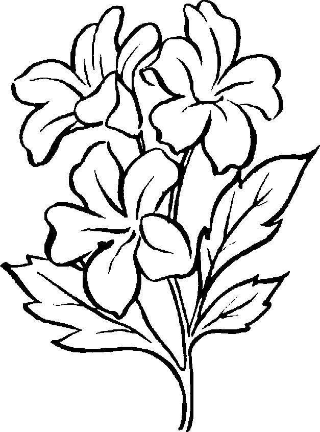 Plant white clipart #5