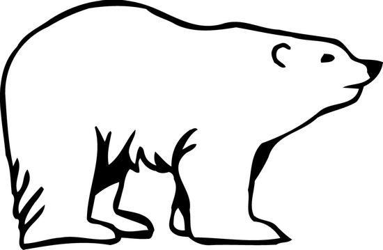 ijsbeer.