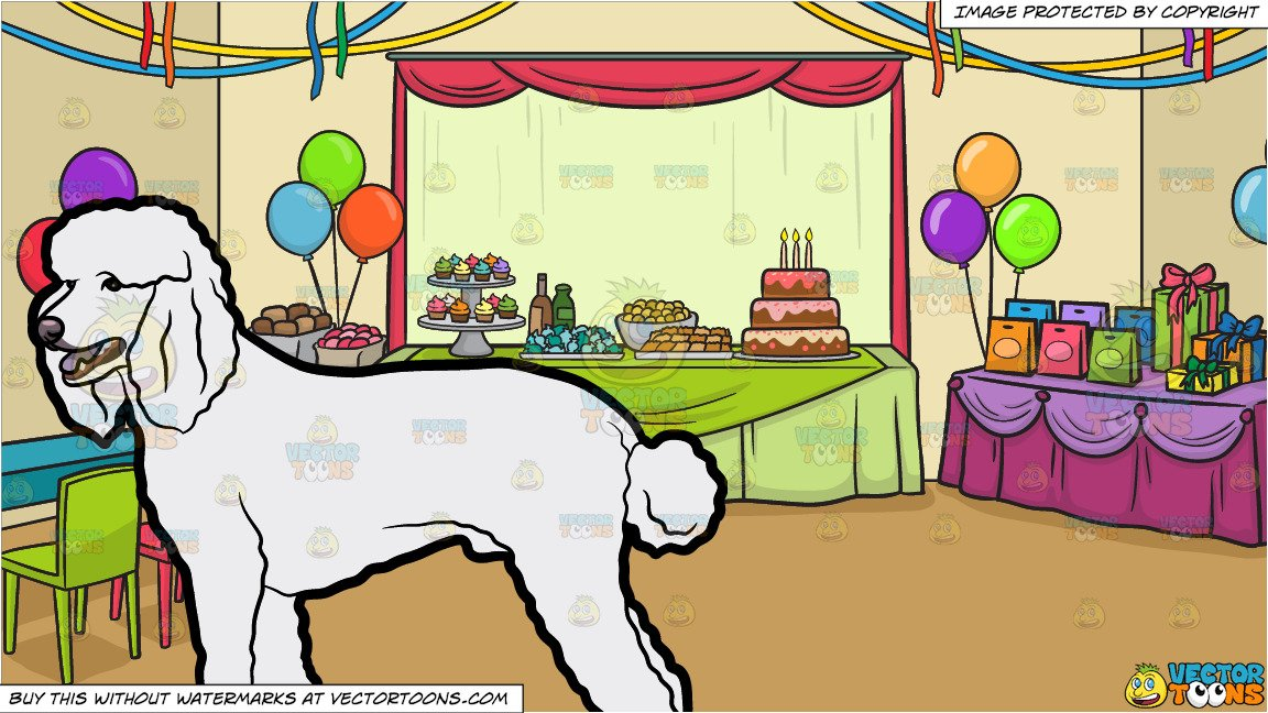 A Styled Poodle and A Birthday Party Background.