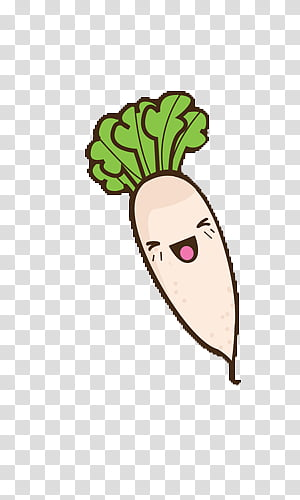 White Radish transparent background PNG cliparts free.