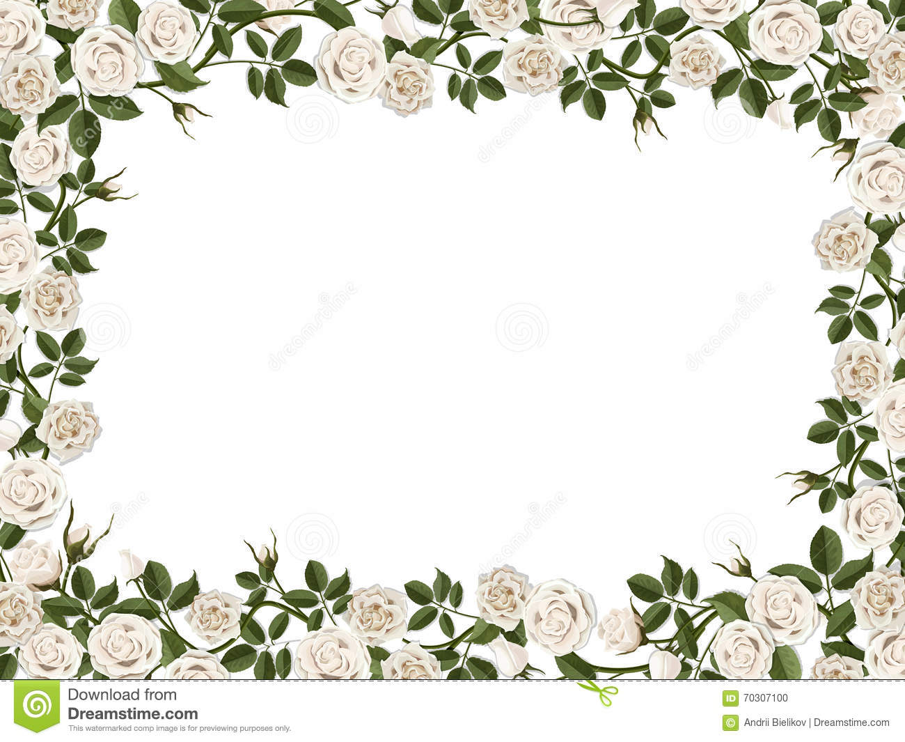 Square Border Of White Roses Stock Vector.