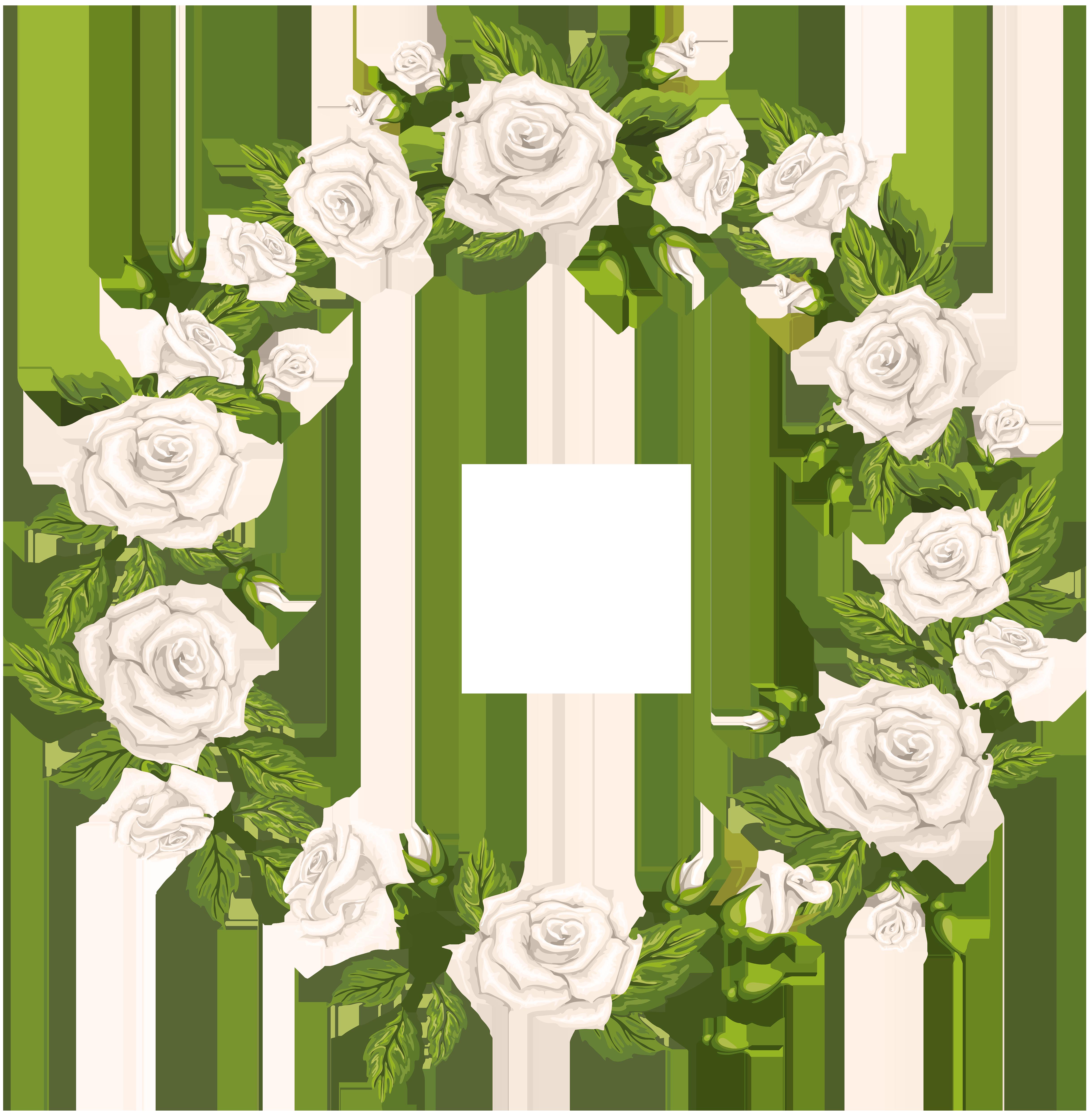 Roses Border White PNG Clip Art.