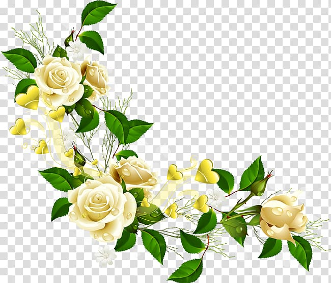 White roses border, Border Flowers , corner flower.