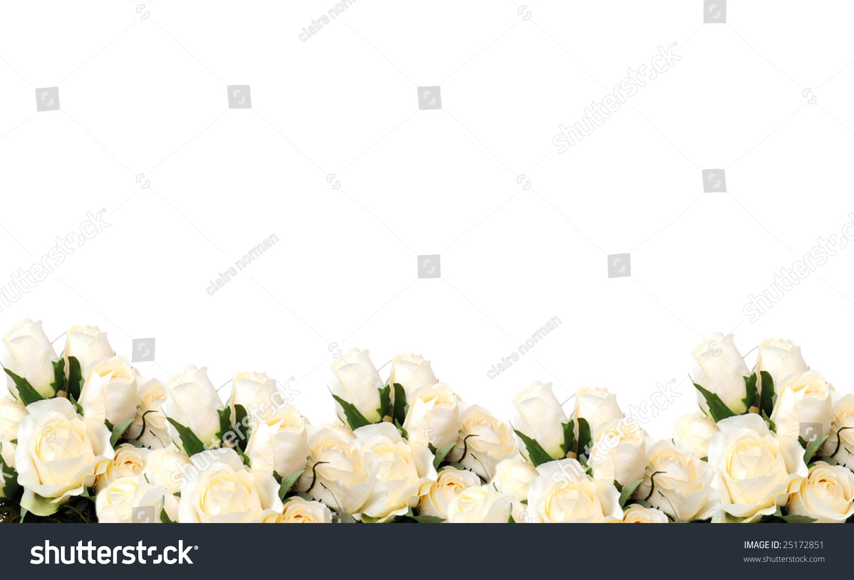 Pretty White Rose Border Stock Photo (Edit Now) 25172851.