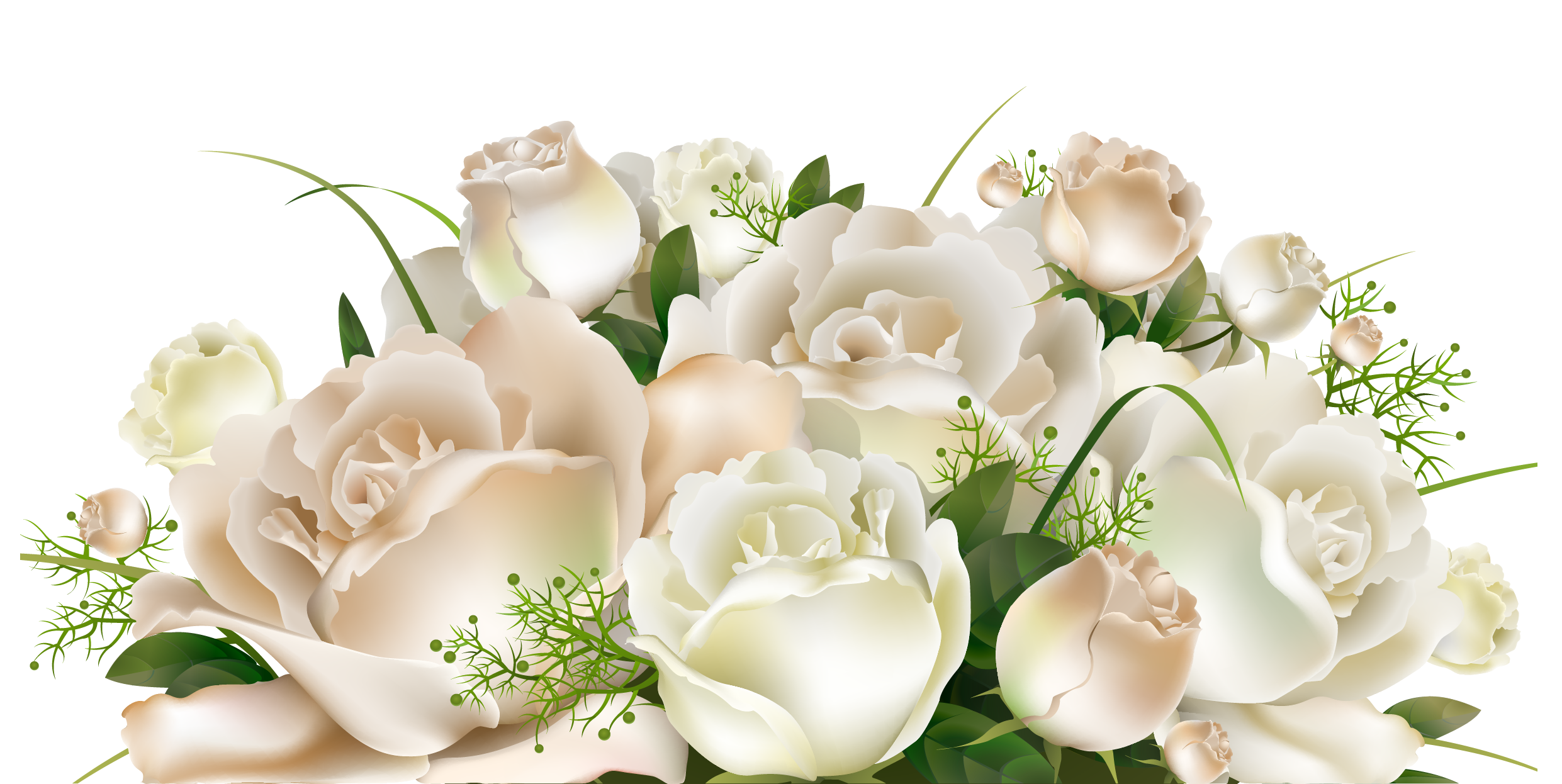 White Roses Decoration PNG Clipart Picture.