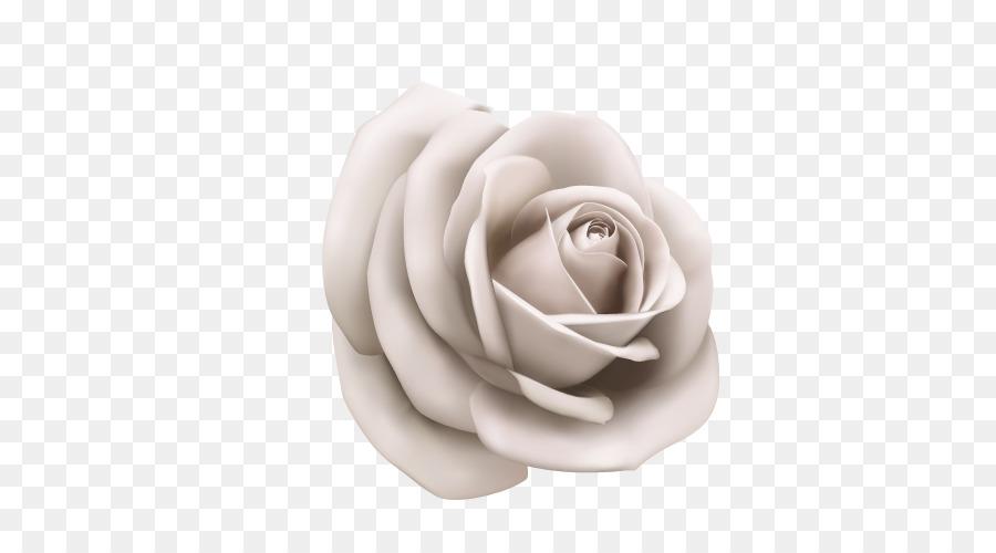 Rose White Clip art.