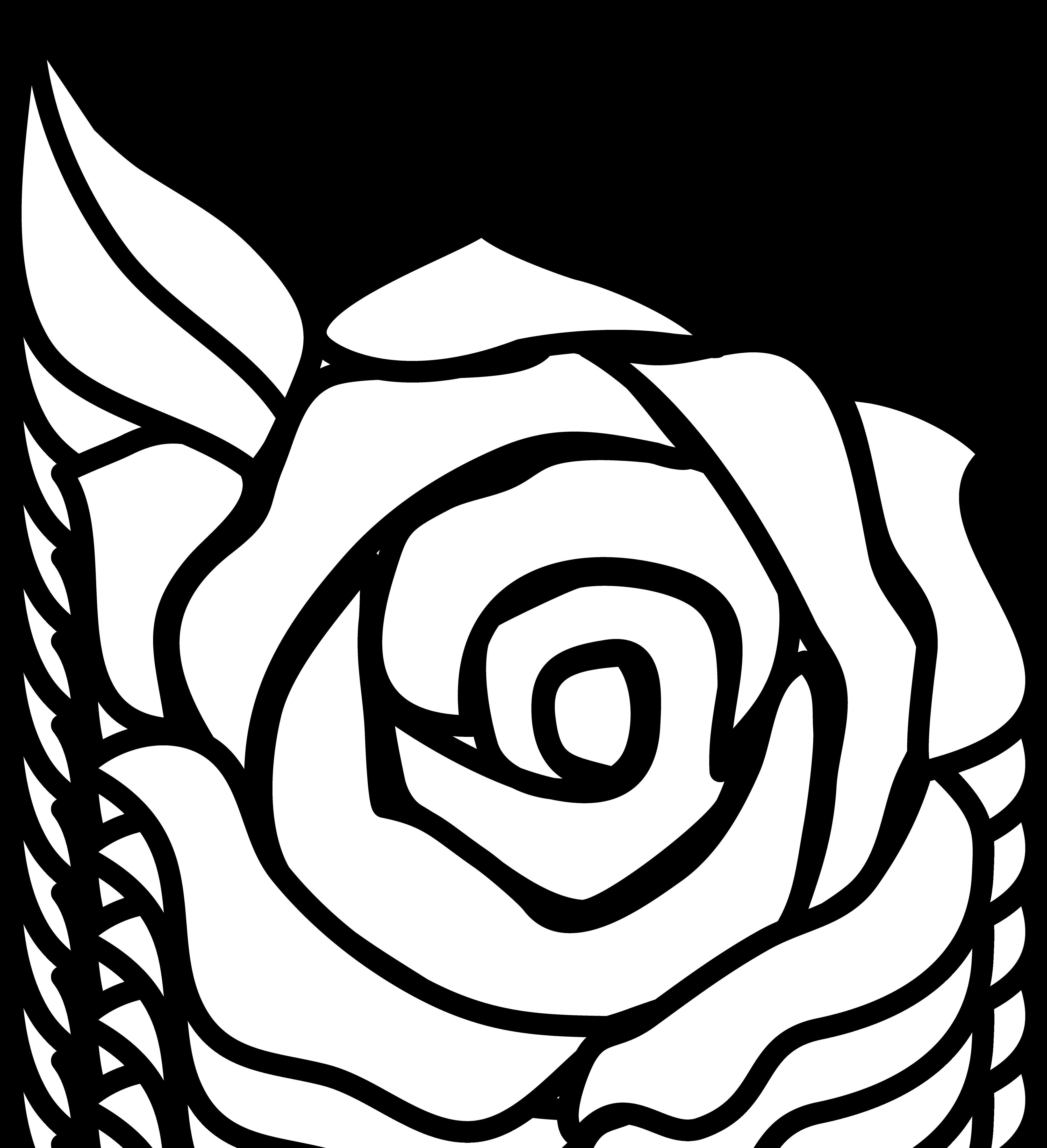 Black And White Rose Border Clip Art Clipart Panda Free Clipart.