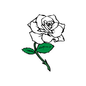 Free White Rose Clipart.
