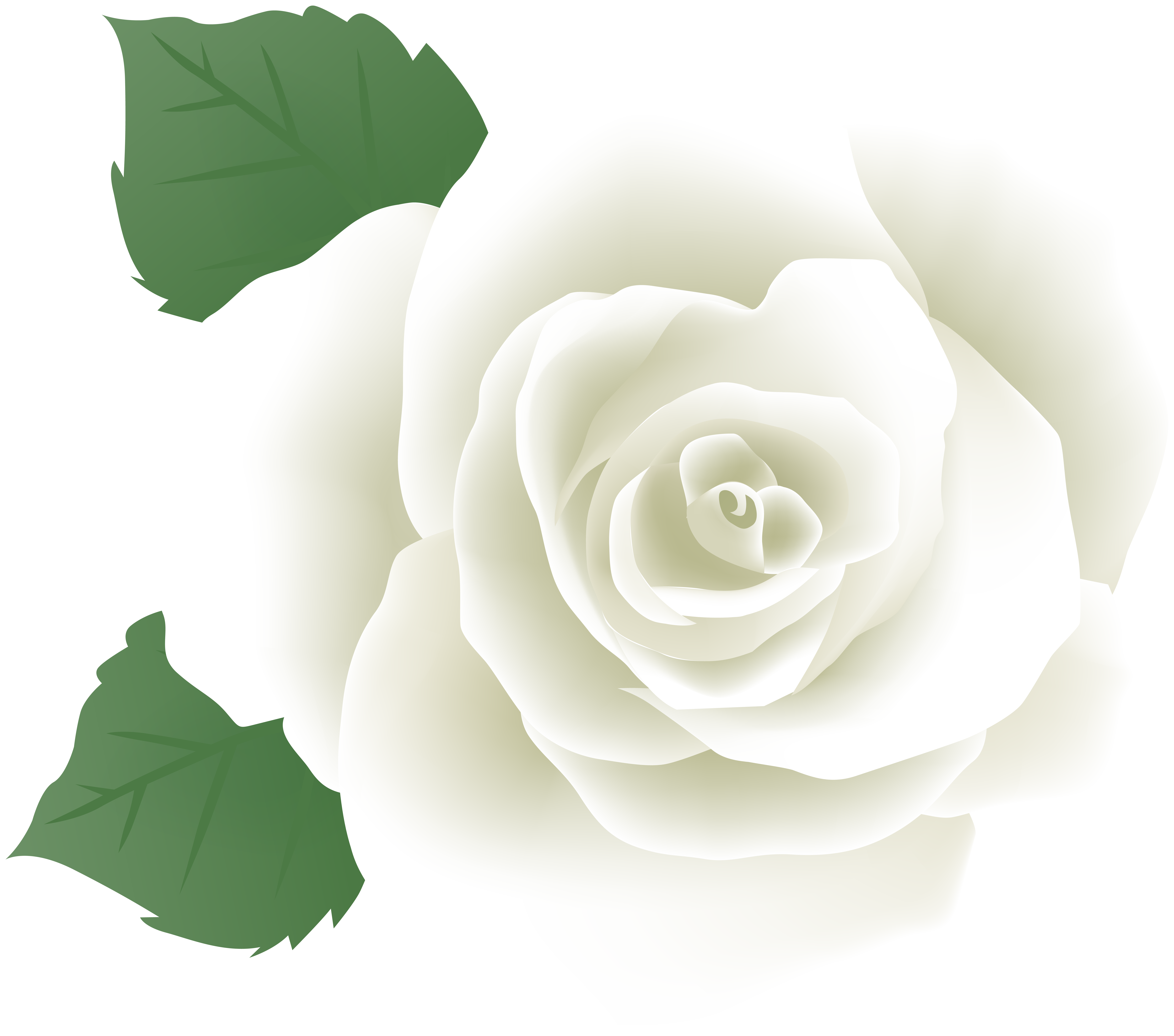 White Rose PNG Deco Image.