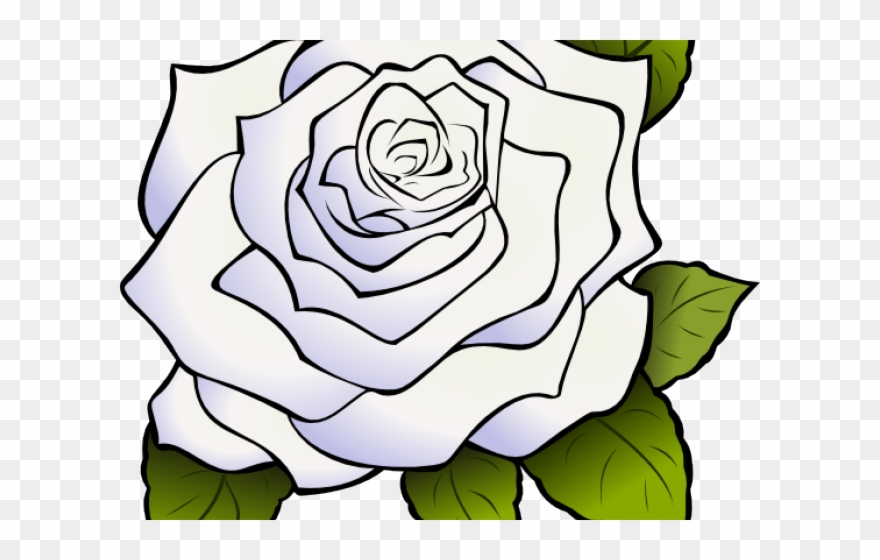White Rose Clipart Animated.