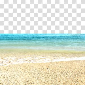 Cartoon , Sandy beach transparent background PNG clipart.