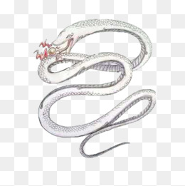 Snake Png, Vector, PSD, and Clipart With Transparent Background for.