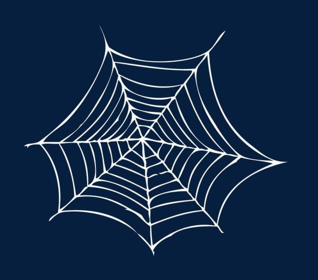 Pretty white spider web PNG clipart.