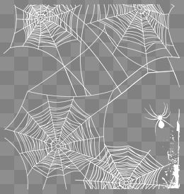 2019 的 White Spider Web Vector, Network, Spider Web, Background PNG.