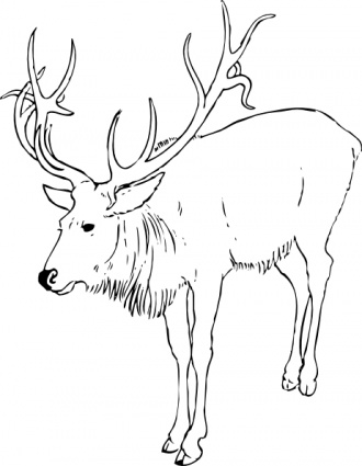 Stag Black And White Clipart.