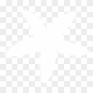White Star Transparent PNG Images, Free Transparent Image Download.