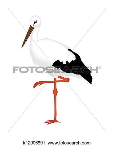 Clipart of White Stork of a white background k12906591.