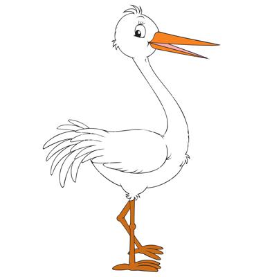 Showing post & media for Cartoon white stork.