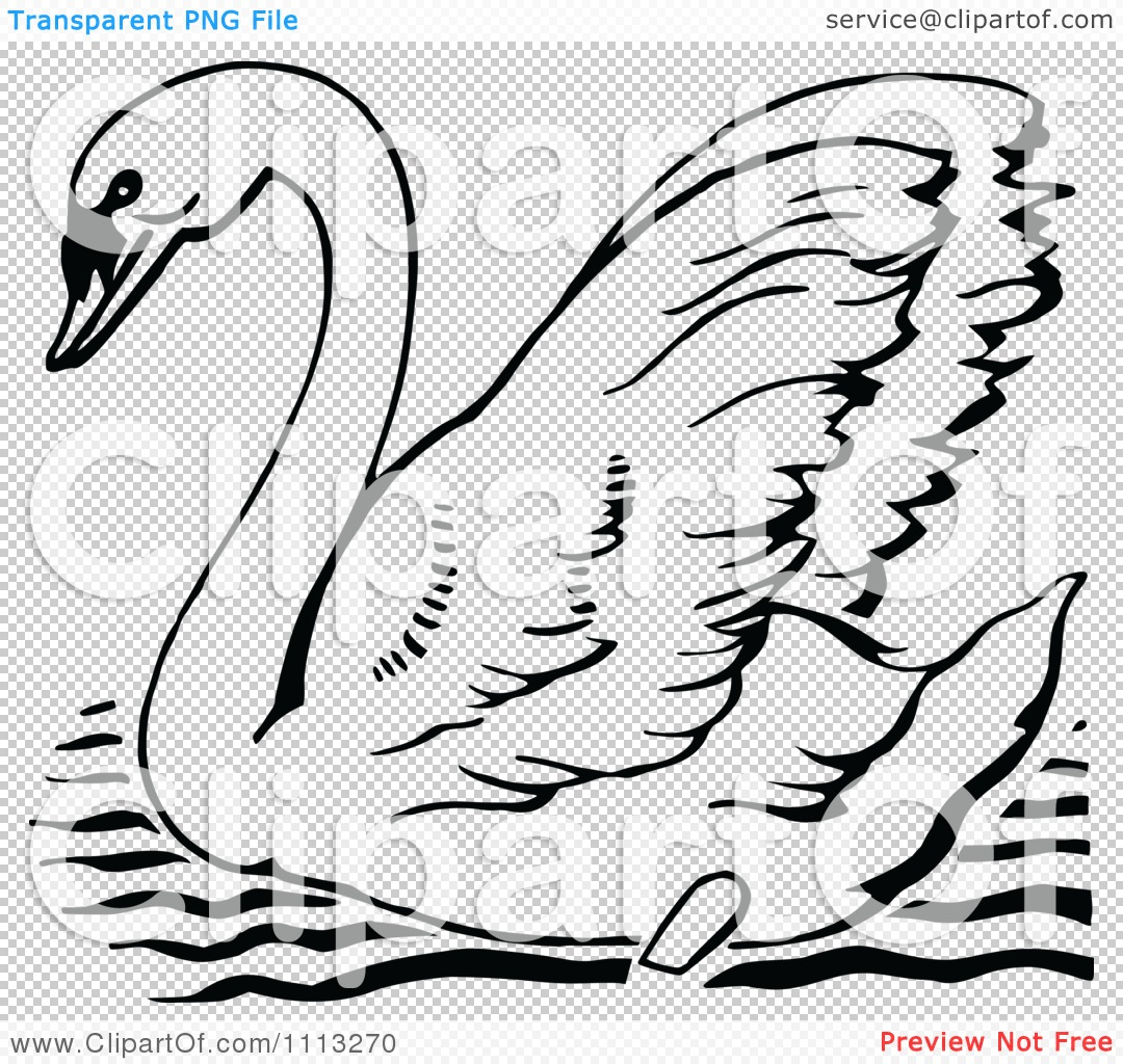 Clipart Vintage Black And White Mute Swan.