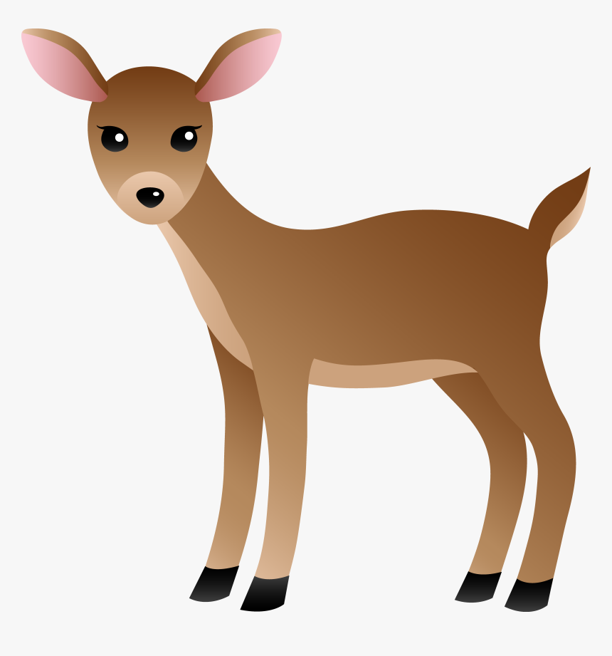 White Tailed Deer Clipart, HD Png Download , Transparent Png.