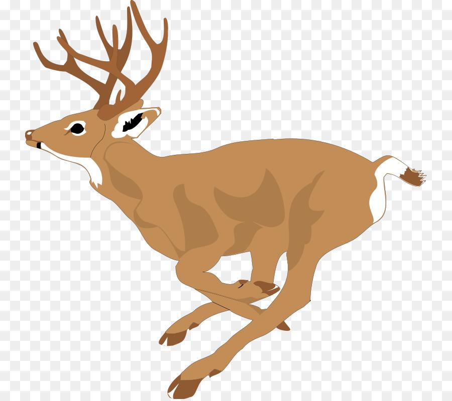 Reindeer Cartoon.