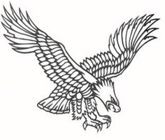 Wedge tailed eagle clipart.