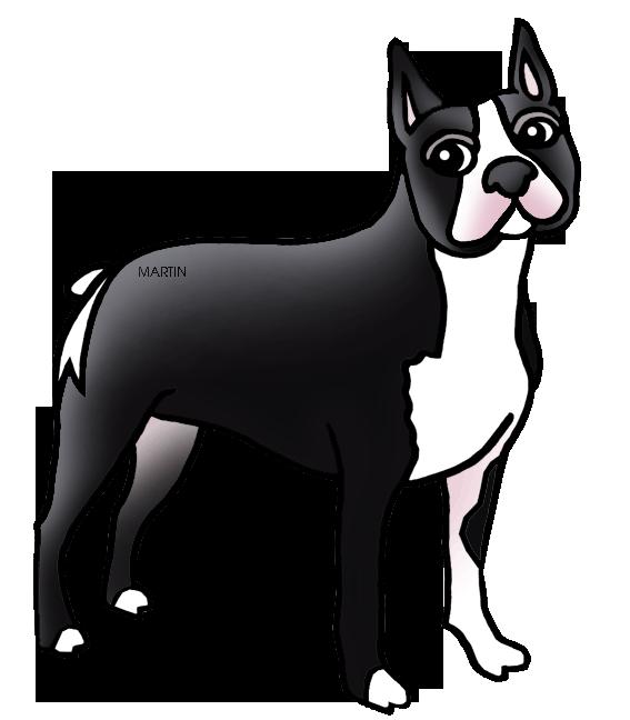Boston Terrier West Highland White Terrier Yorkshire Terrier.