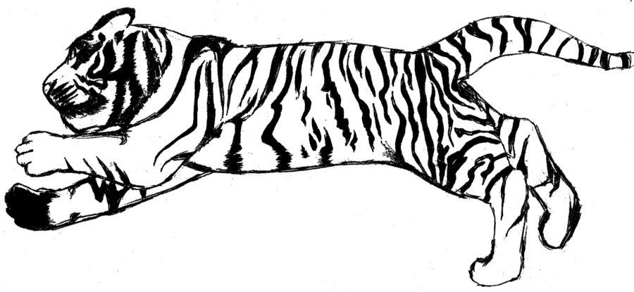 White Tiger Clipart & White Tiger Clip Art Images.