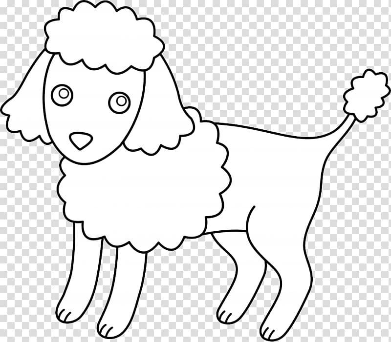 Miniature Poodle Toy Poodle Standard Poodle Puppy, Happy Dog.