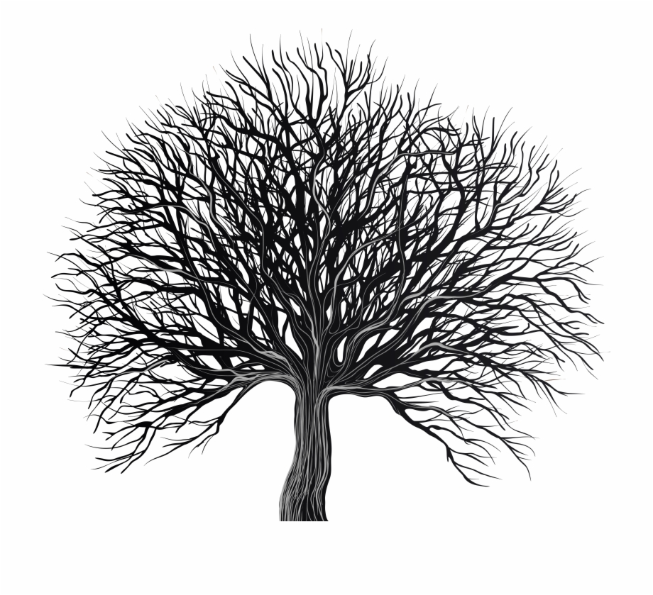 Free Black And White Tree Silhouette, Download Free Clip Art.